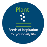 plant seeds graphic